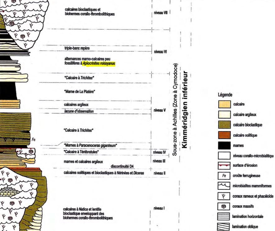 Stratigraphy_marked