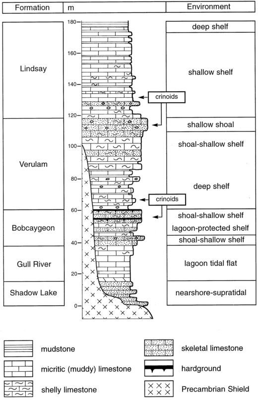 Brookfield & Brett (1988)_Lake Simcoe_stratigraphic section