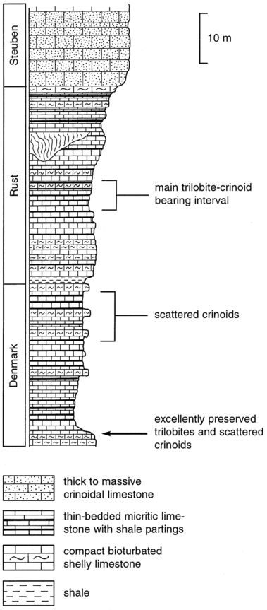 Brett & Baird (1999)_Trenton Falls_stratigraphic section