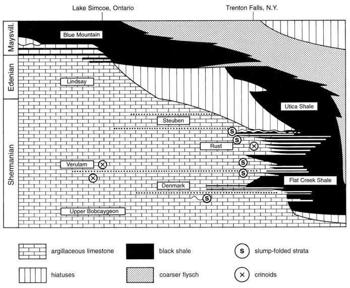 Lehmann et. al (1995)_Trenton-Simcoe Group_Stratigraphic Profile