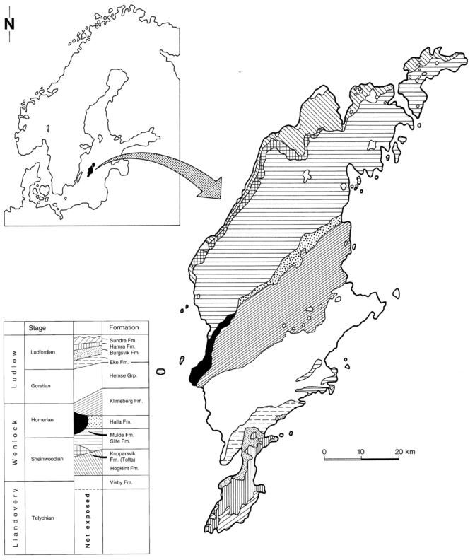 Kershaw (1993)_Geological map and Stratigraphy_Gotland