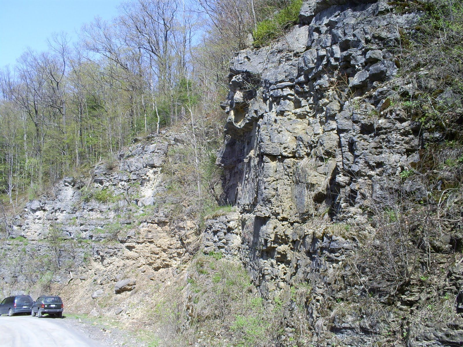 Mosquito Point Outcrop in Munnsville with Coeyman's Limestone