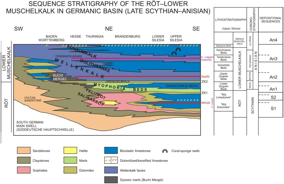 Szulc, Matysik & Hagdorn (2015)_The mid-Triassic-Muschelkalk in Southern Poland